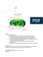 Biology Chapter 1 Federal Board   Endoplasmic Reticulum