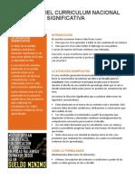 Boletin-Curriculum001-situacion_significativa.pdf