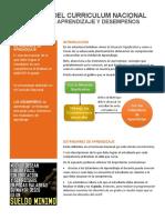 Boletin-Curriculum003-estándares_de_aprendizaje.pdf