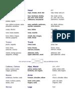 partes y organos del cuerpo humano en ingles-español.docx