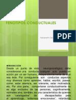 Expo Fenotipos Conductuales