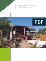 Desplazamiento-Interno-Forzado-en-Mex.pdf