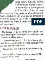 Human_eye_1