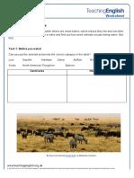 Carnivores vs Herbivores Student Worksheet