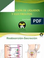 Absorción Líquidos y Electrolitos