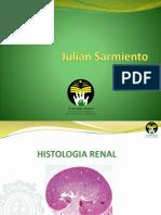 Diapositivas Renal