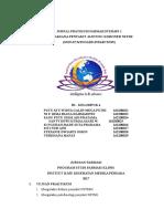 Jurnal Pratikum Farter NSTEMI B1 Klp 4 NIM 22-29
