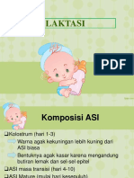 PPT LAKTASI FIX+pre post