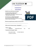 Y4 - Comprehension Exercise 1