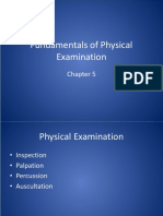 Rt 254 Physical Exam