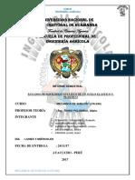 GRUPO N°4 ESTADOS DE EQUILIBRIO ESTÁTICO DE UN SUELO ELÁSTICO Y PLÁSTICO