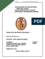 LABORATORIO DE MICROBIOLOGIA-ESCHERICHIA COLI.docx
