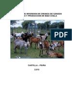 Proyecto  Castilla - Rosa.pdf