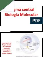Aminoácidos_estructura química