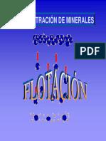 Presentación Flotación de Minerales