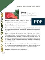 Plantas Medicinales Forosecuador.ec