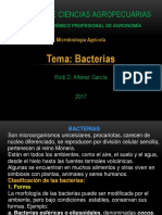 Clase 7 Bacteria