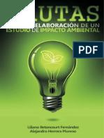 Pautas impacto.pdf