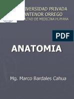 14.Musculo Abdominal y Hernias Inguinales