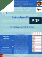 """Diagnóstico de La Técnica de Lavado de Manos de La Organización Mundial de La Salud."""" (1)"""