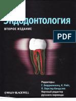 Бердженхолц Г. Эндодонтология (2013)