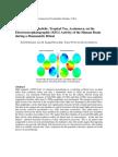 EEG Ayahuasca Study