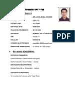 Curriculum Vitae- Carlos 1 2