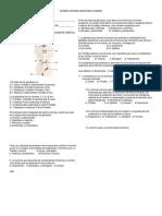 Examenhormonas8ypoblaciones 120731200711 Phpapp01 (1)