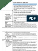 Areas - Competencias - Capacidades - Desempeños 1º Grado