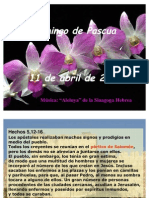 2010-salmo 117