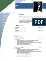 cv_resume_word_template_632.doc