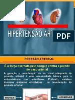 aula hipertensao medicina