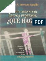 Ferreyra Castillo, Melchor. Quiero Organizar Grupos Pequeños, Qué Hago