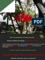 3-Ricardo Echeverría IFN Herramienta Para La Bioprospección