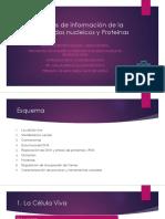 Moléculas de Información (2).Pptx