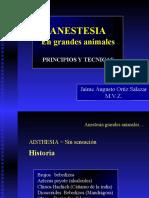 ANESTESIA GRANDES ANIMALES
