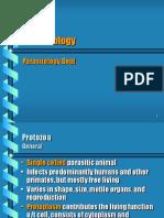 Protozoa Usus