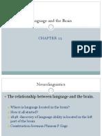Language and the Brain