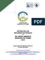 Informe Ambiental Yumbo