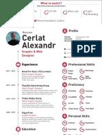 CV + Portfolio + Recommendation Letters