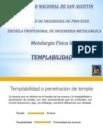 Templabilidad II Registro