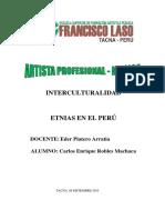 Etnias en El Peru - Monografia