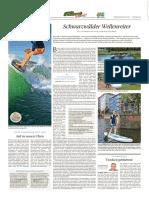 PZ Pforzheim vom 10.06.2017 Seite 38.pdf