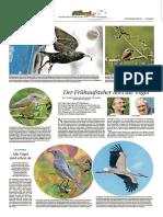 PZ Pforzheim vom 11.03.2017 Seite 40.pdf