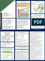 MCR-TripleGold-Brochure-2014-1 (1).pdf
