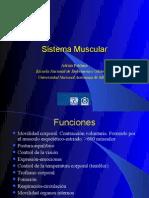 Sis Muscular[1]