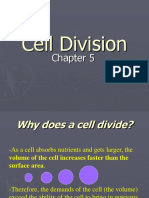 Cell Division 100 Online