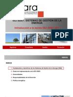 1introducionygeneralidades.pdf