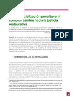 Desjudicialización DPJ