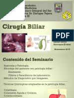 Consideraciones Quirurgicas de la Patología Biliar